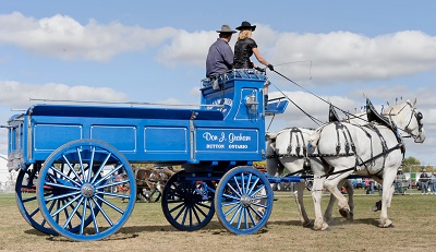 Working Wagon Teams Show