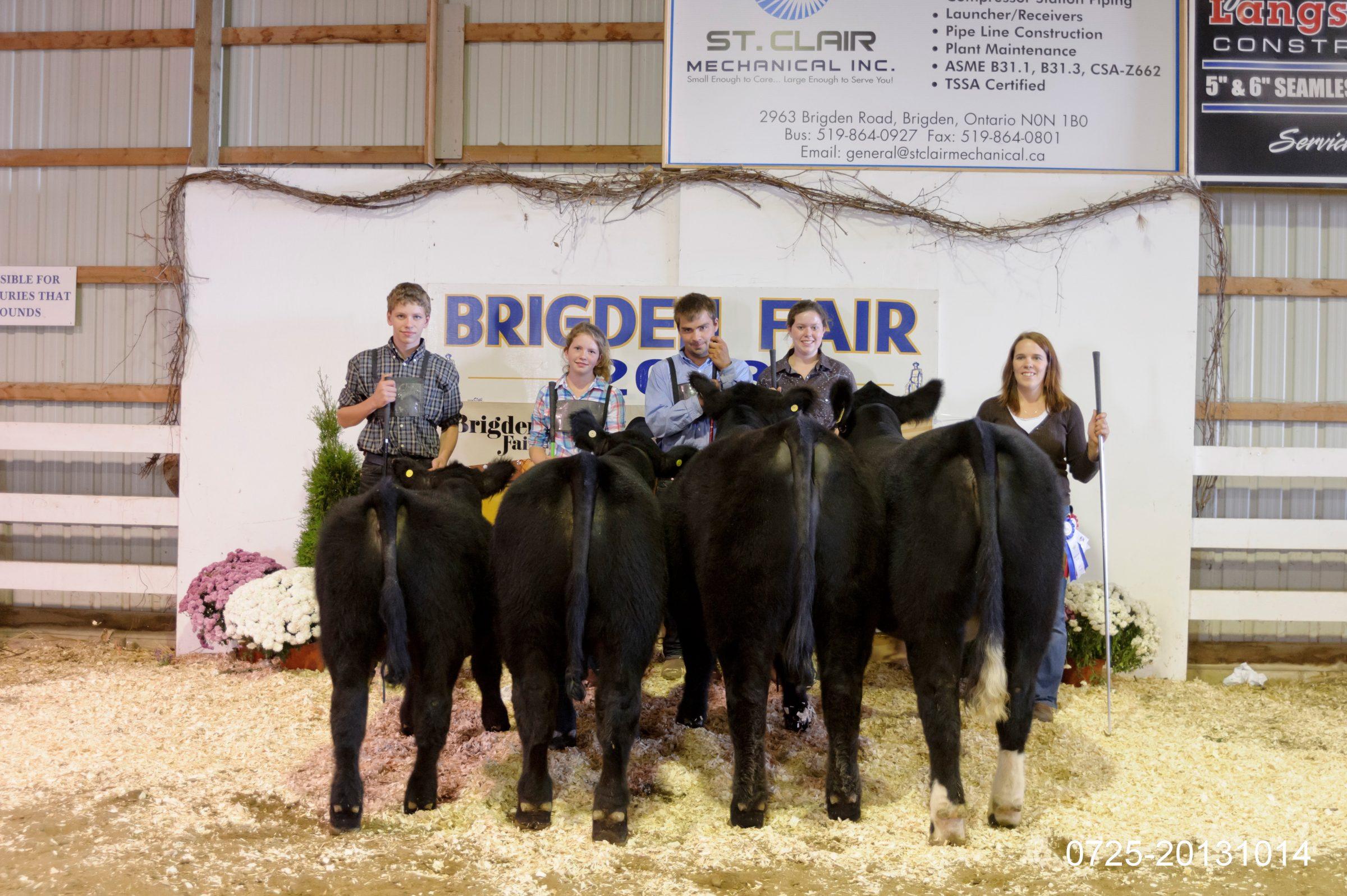 Beef Show 2013