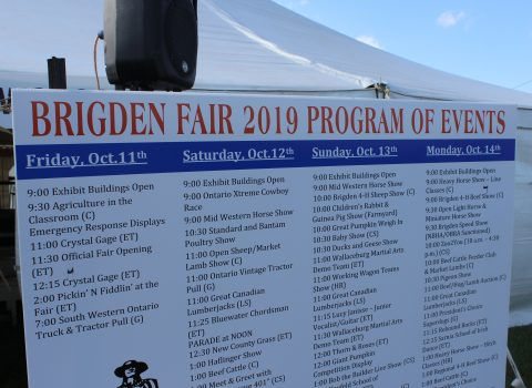 Brigden Fair 2019 Summary