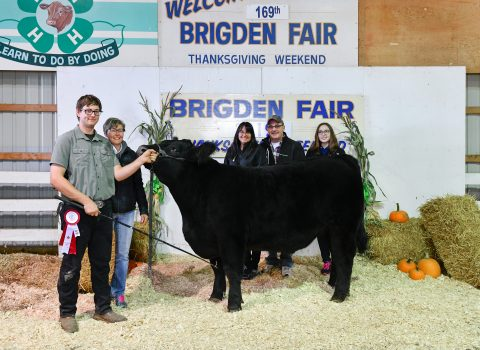2019 Brigden Fair Livestock Auction