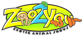 Zoo2You Logo